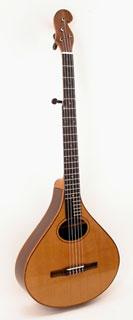 #376-039 5-String