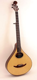 #382-045 5-String