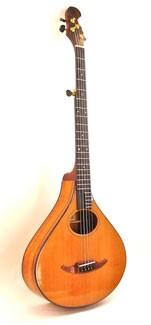 #391-054 5-String