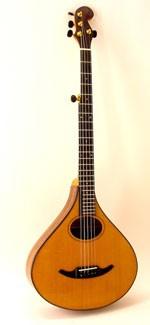 #409-069 5-String