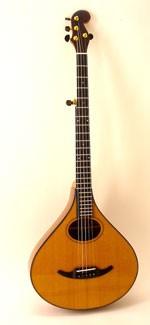 #410-070 5-String