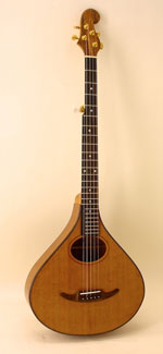 #413-071 5-String