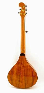 6 String Banjola - Rear View