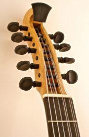 9 String Banjola Peghead