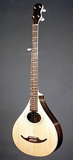 #254-002 – 5-String