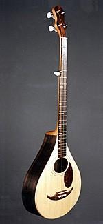 #255-003 – 5-String