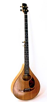 #256-004 – 5-String