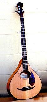 #271-007 – 5-String