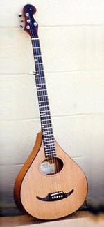 #272-008 – 5-String