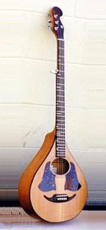 #273-009 – 5-String