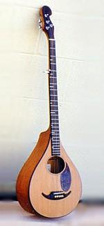 #274-010 – 5-String