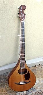 #280-011 6-String