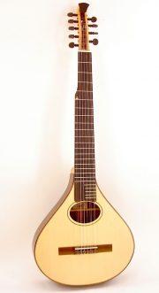 2008 Custom Nylon String Banjola