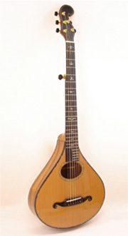 Model - Standard 6 String